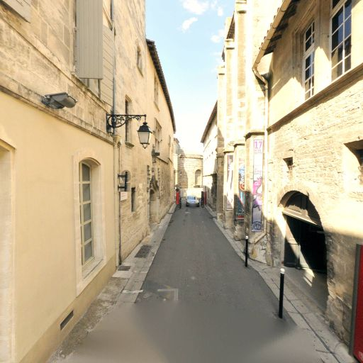 Musée Réattu - Musée - Arles